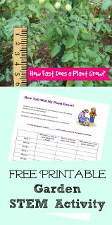 best gardening kids images gardening  garden ideas for kids outdoor math activity plants and measurement for the classroom
