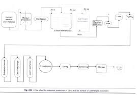 Industrial Production Of Vinegar Flow Chart Production Of Important Organic Acids By Fermentation