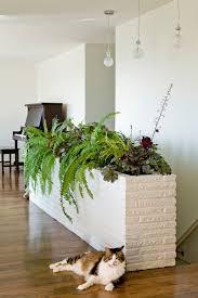 25 indoor garden ideas