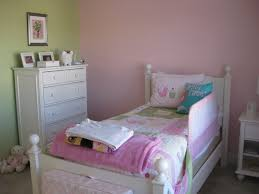 Pink And Green Walls In A Bedroom Wonderful Toddler Girl Bedroom With Pink Wall Color And Pink