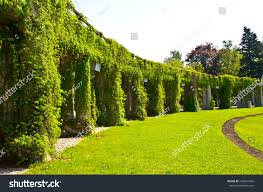 Small Picture Brilliant Garden Archway This Pin And More On Ideas By Whoistracy