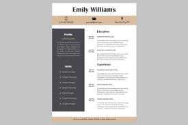 Creative Resume Template Cv
