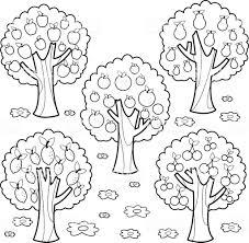 Fruitbomen Zwartwit Boekenpagina Kleurplaten Stockvectorkunst En