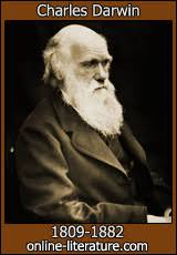 the foundations of the origin of species by charles darwin search  the essay of 1844 part i