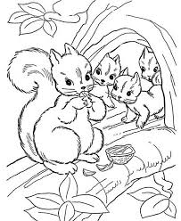 Squirrel Squirrel Eating Nut With Her Children Coloring Page