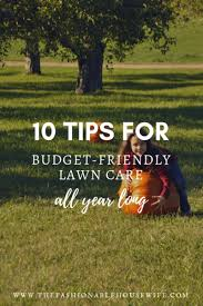 Budget Lawn Care 10 Tips For Budget Friendly Lawn Care All Year Round The