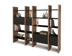 Furniture:Captivating Modern Shelving Units With Wooden Divider In Brown  Color Accent Also Black Wooden