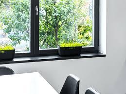 Fensterbrett Ansicht Des Geaffneten Fensters Mit Ausgefahrenem