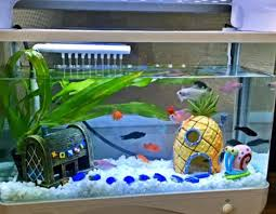 Small Picture Online Get Cheap Fish Tank Sale Aliexpresscom Alibaba Group