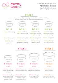Food Portion Size Chart 66 Up To Date Weaning Chart