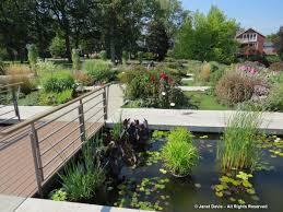 claine gardens janet davis