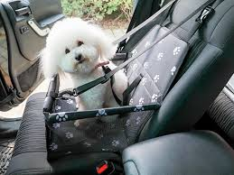 qualimax pet dog car seat cover