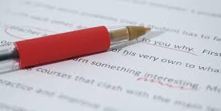 best essay writing reviews junior