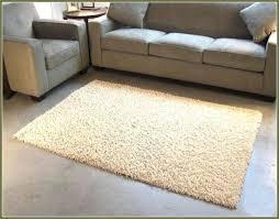medium size of architecture 6 x 4 area rug thelittlelittle stylish pertaining to 7 of