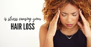 Image result for free google images hairloss