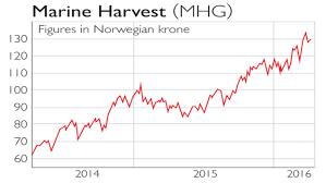 Seafood Yield Chart Land This Fish Stock Moneyweek