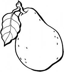 Fruit Coloring Pages Printable Pear Fruits Coloring Pages Of