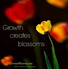 Quotes About Flowers Blooming Mesmerizing Flower Bud Quotes Esfirocat
