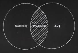 Venn Diagram Of Real And Fake Science At Ted Active 2011 Science Art Wonder Huffpost