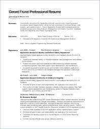 Resume Summary Samples Magnificent Resume Career Summary Thiswritelife