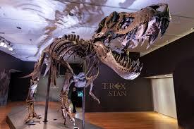 Christie's to Put <b>Tyrannosaurus Rex</b> Skeleton Up for Auction | Voice ...
