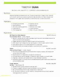 Business Analyst Resume Summary Unique New 11 Unique Sample Ba