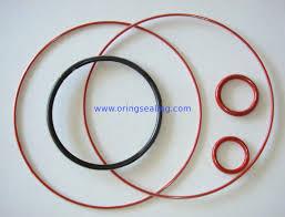 Teflon Fep Pfa And Sil Fkm Encapsulated O Ring Capsul O
