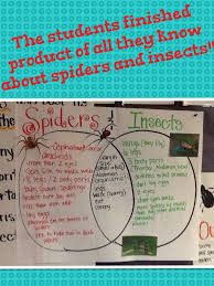Pumpkin Venn Diagram Happy Friday 11 6 Classroom News Mrs Van Bredas