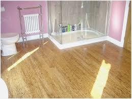Can You Put Laminate Flooring Bathroom - Carpet Vidalondon ...