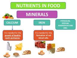 Image result for food minerals