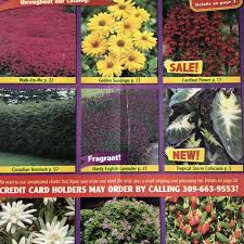exciting gardens free seed catalog