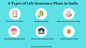 This plan is launched keeping in mind the growing rate of inflation. 6 Types Of Life Insurance Plans In India
