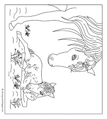 Jaargetijden Lente Kleurplaten Paarden