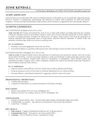 Internal Auditor Resume Objective This Is Senior Auditor Resume Accounting Director Accounting 29