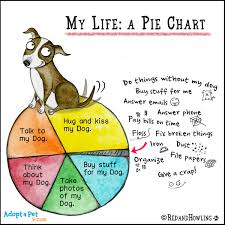 dog chart adopt a pet com blog new cartoon pie chart adopt a pet