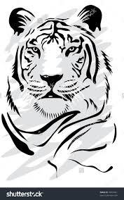 White Tiger Illustration Vectorielle Libre De Droits 39873421