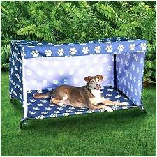 outdoor dog bed with canopy – aeroportul-baneasa.info