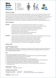 Resume Templates Word Nurse Resume Corner