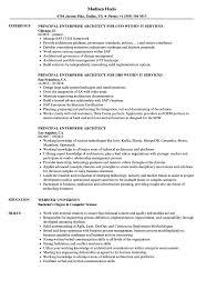 Principal Enterprise Architect Resume Samples Velvet Jobs