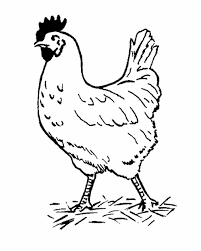 Small Picture Hen Coloring Page Printable Coloring Page Featuring A Chicken Hen