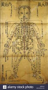 Acupuncture Wall Charts Download Acupuncture Chart Stock Photos Acupuncture Chart Stock