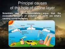 ozone depletion essay opinion essay topics for th graders who  ozone depletion essay