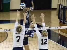 chair volleyball net. yale chair volleyball net