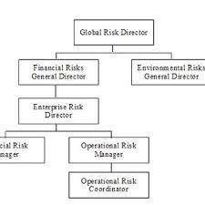 Automaker Risk Management Organizational Chart Download