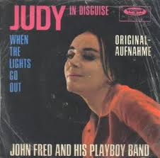 Image result for judy in disguise images