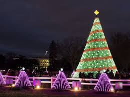 Dc Holiday Lights Tour Christmas In Dc Christmas In Dc Christmas Christmas Events