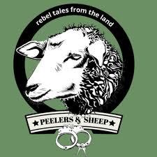 Peelers And Sheep