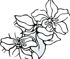 Summer Flowers Coloring Pages Printable Littapescom