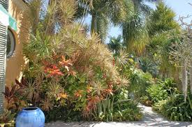 Small Picture Tropical Garden Design Tropical Landscape Miami by www