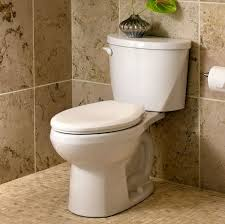 American Standard Cadet 3 Decor American Standard 5321110222 Everclean Elongated Toilet Seat